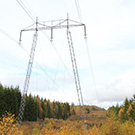 Pole in line for 400 kV, fall